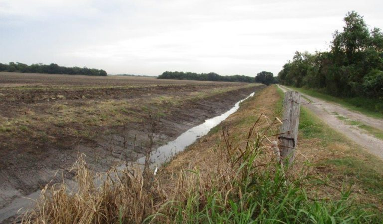 Ditch Banks 2020 316-00-00 1
